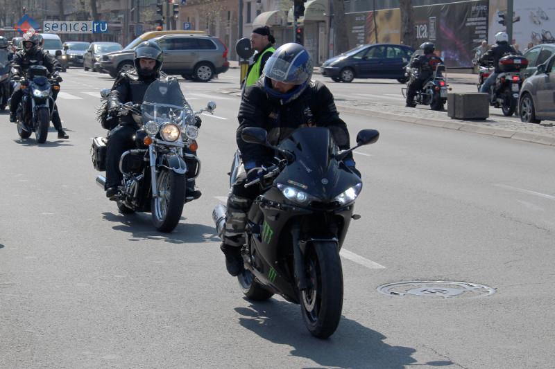 Мотоциклисты в Белграде