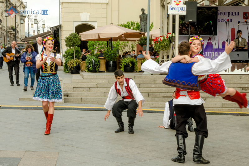 Дни Белграда, Москва, сербская культура