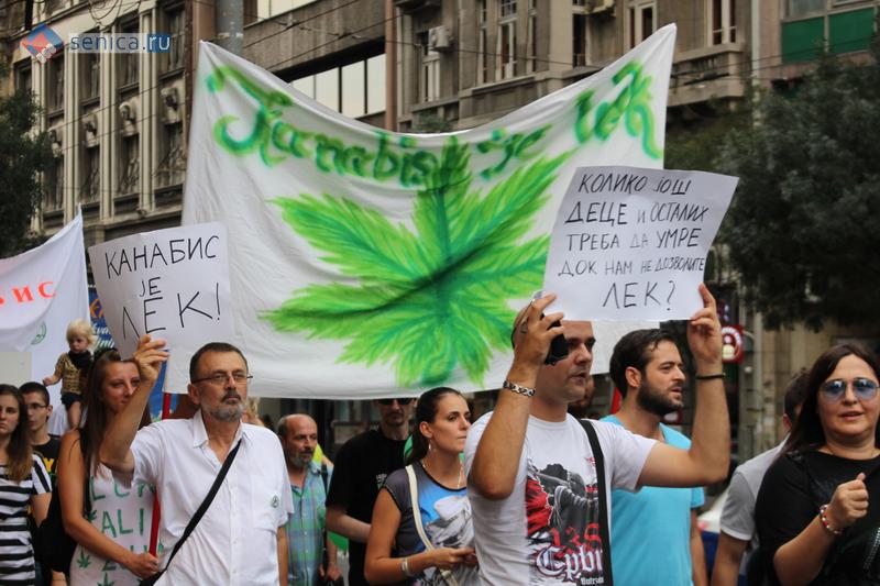 Каннабис-марш в Белграде
