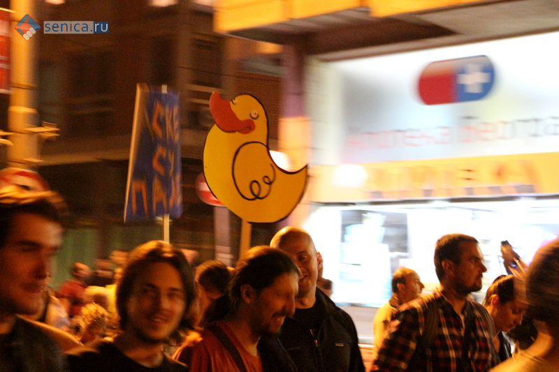 Жёлтая утка, символ протестов