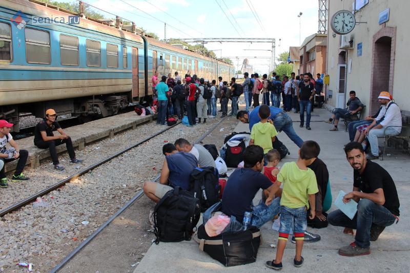 Может случиться так, что мигранты задержатся в Сербии