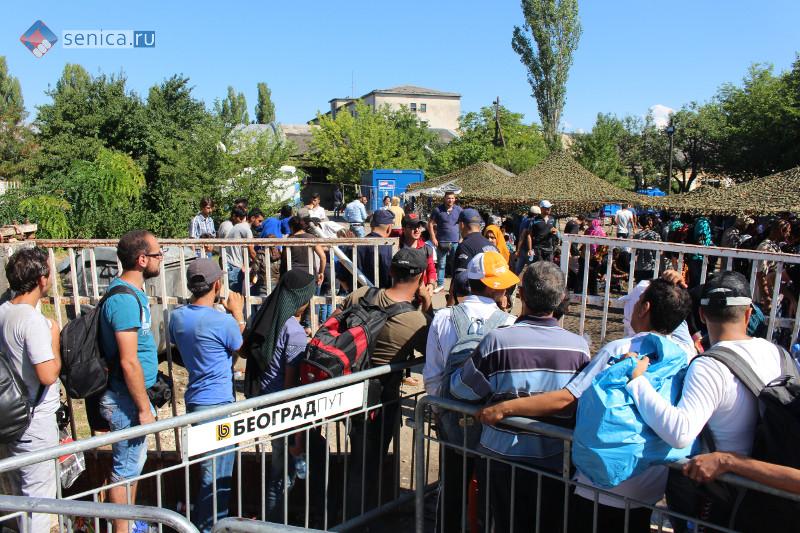 Мигранты в лагере для беженцев в Прешево в Сербии