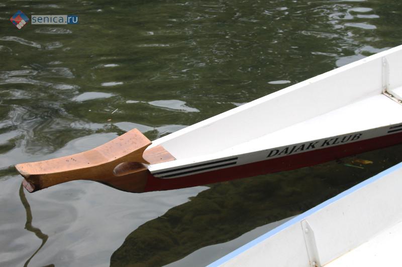 Нос лодки в виде клюва