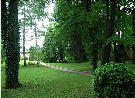 Парк вокруг дворца Тито
