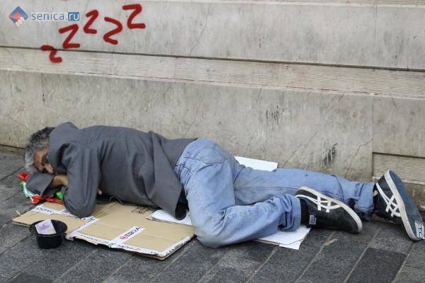 Бездомный в Белграде
