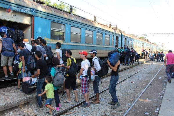 Мигранты садятся в поезд до Белграда